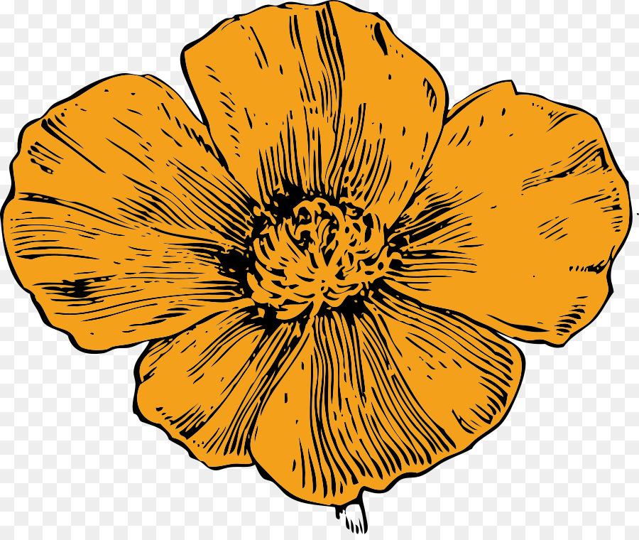 Black and white yellow. California clipart state california flower