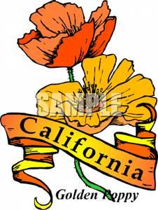 Clip art image the. California clipart state california flower