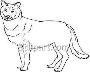Calm clipart black and white. Wolf royalty free picture