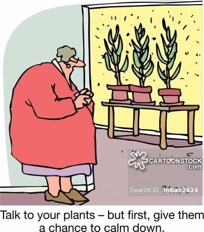 Calm clipart talk. Talking to plants cartoons