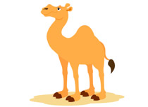 Camel clipart. Free clip art pictures