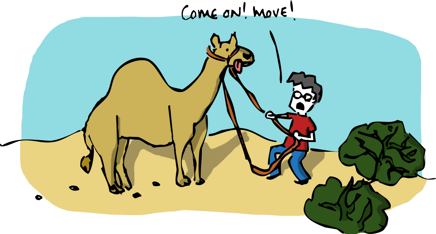 Sketchy science a horse. Camel clipart adaption