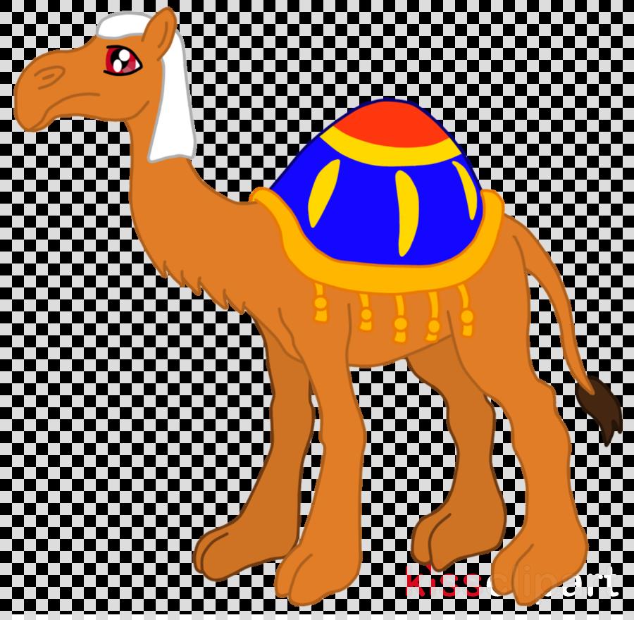 Camel clipart arabian. Download dromedary bactrian clip