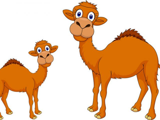 Free download clip art. Camel clipart baby camel