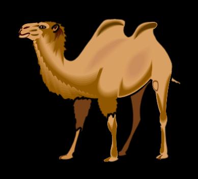 Smart exchange usa. Camel clipart bactrian camel