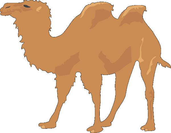 Camel clipart bactrian camel. Clip art at clker