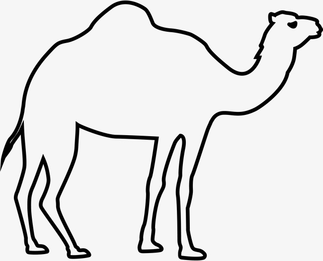 Camel clipart black and white. Eid al adha png
