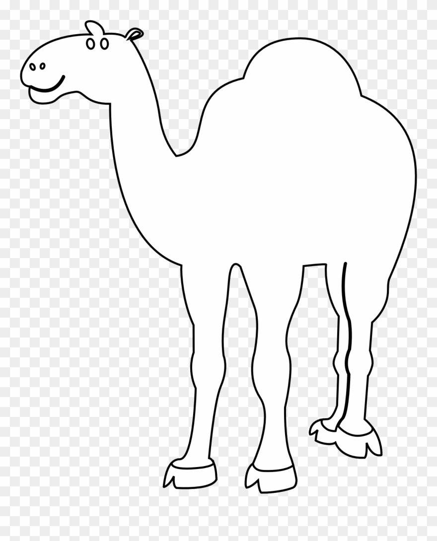 Camel clipart black and white. Coloring background png