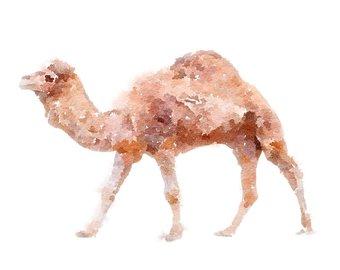 Camel clipart brown. Watercolor etsy printable animal