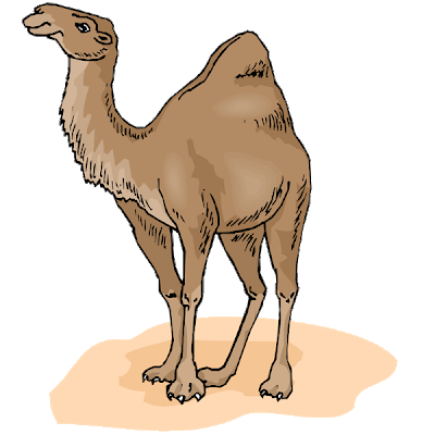 Funny pictures cartoon clip. Camel clipart brown
