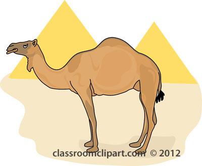 . Camel clipart camel egypt