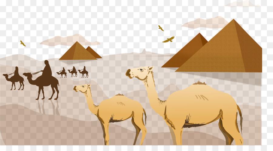 Camel clipart camel egyptian. Sahara arabian desert clip