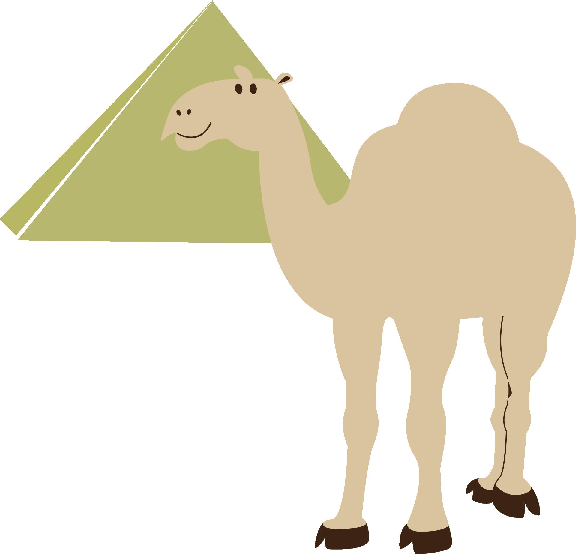 Egyptian pyramids cairo camel. Egypt clipart desert pyramid