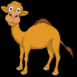 camel clipart cammel