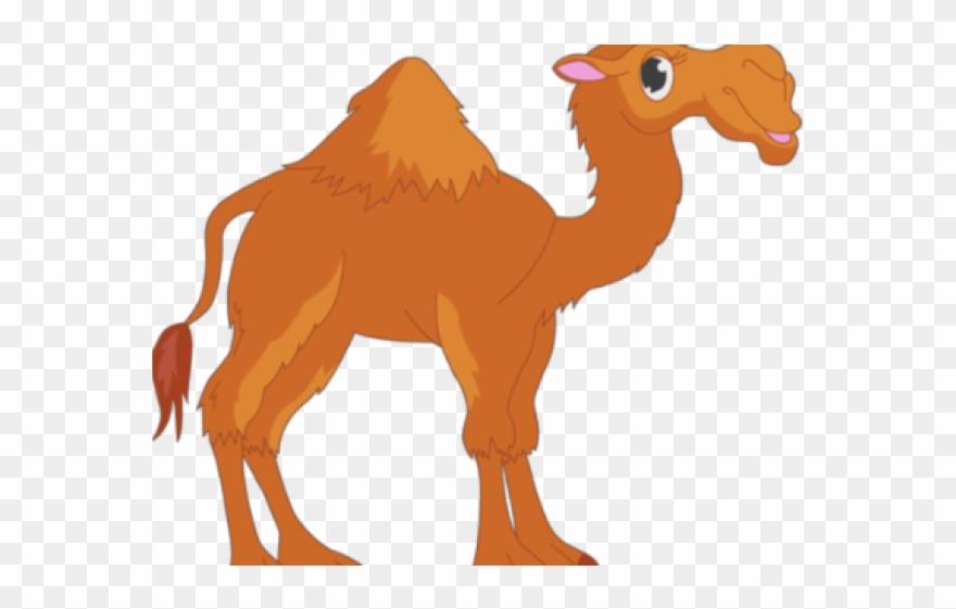 Yellow arabian png download. Camel clipart comic