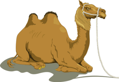 camel clipart comic