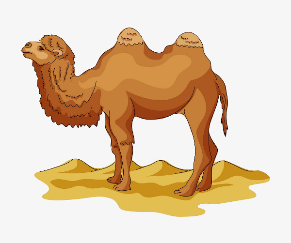 Camel clipart desert camel. Yellow leave the material