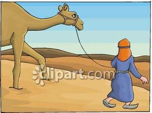 Camel clipart desert camel. Person leading a in
