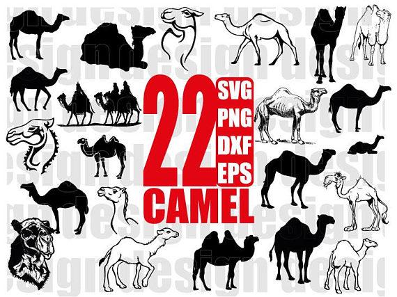 Svg animal png sahara. Camel clipart desert camel