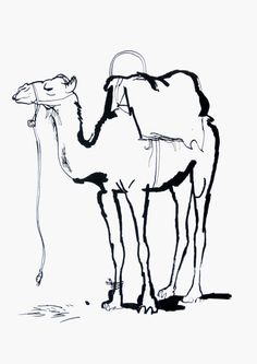 Artists drawings of camels. Camel clipart drawing