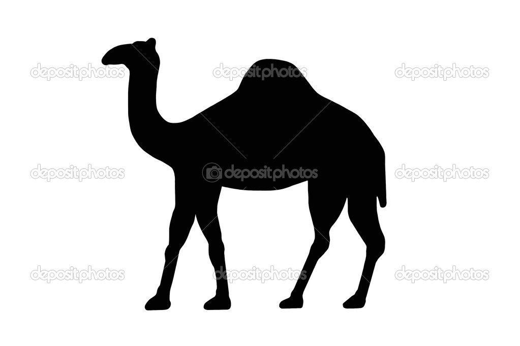 Pin on . Camel clipart dromedary camel