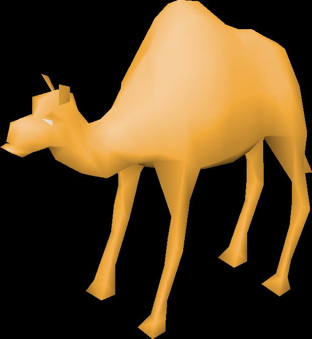Old school runescape wiki. Camel clipart dromedary camel