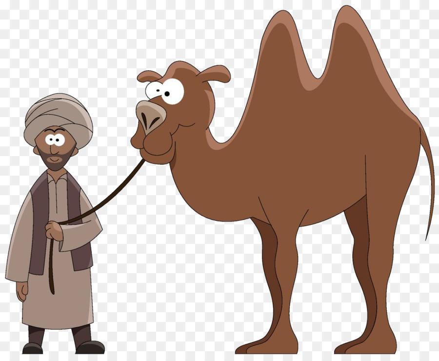 Cartoon stock photography clip. Camel clipart dromedary camel