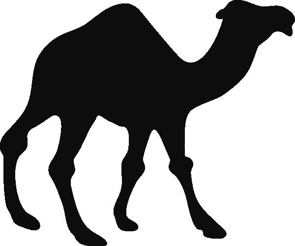 Black and white panda. Camel clipart gambar