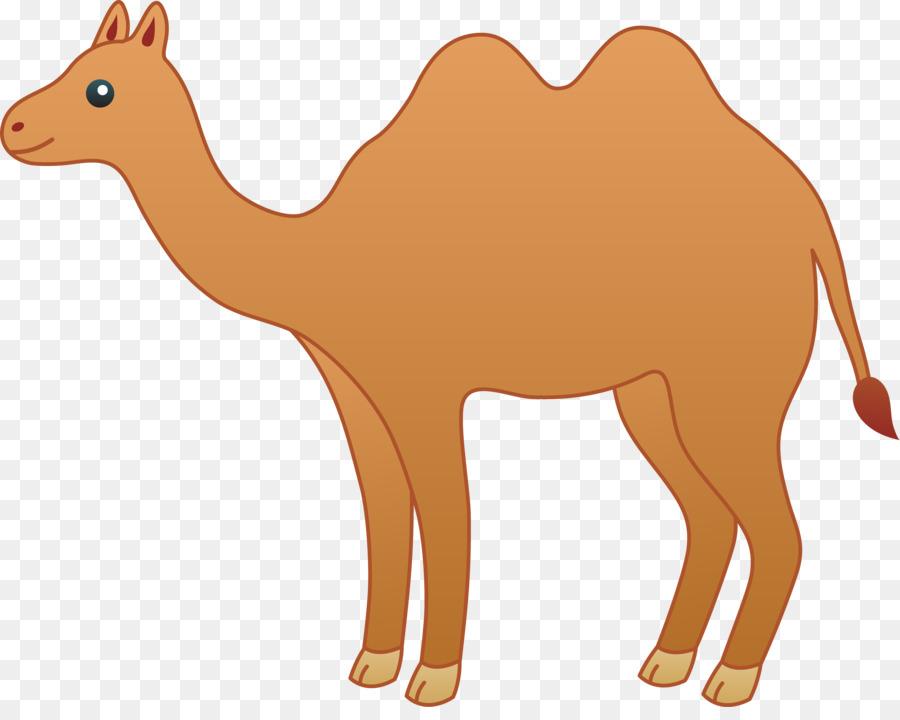 Free download clip art. Camel clipart gambar