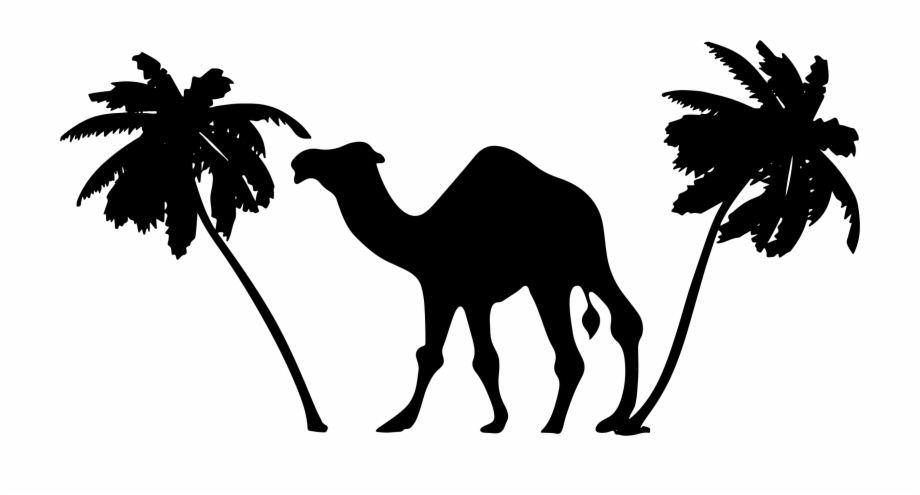 Camel clipart palm tree. Image and png free