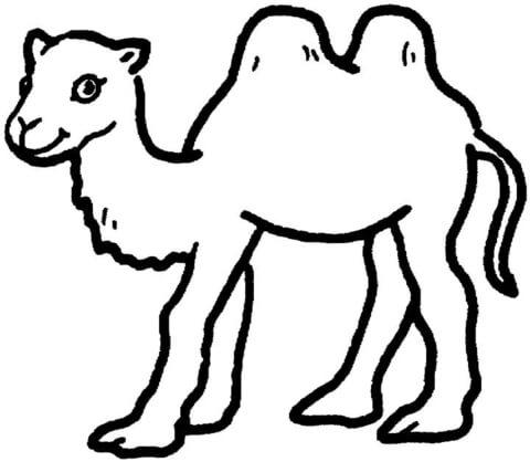 camel clipart printable