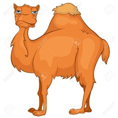 Camel clipart she. Clip art