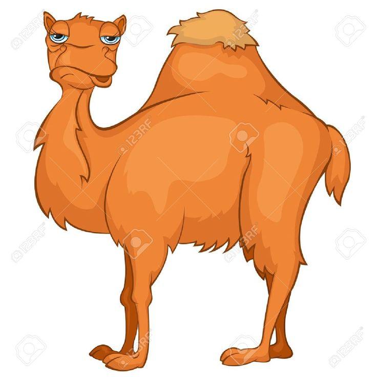 Camel clipart she.  best clip art