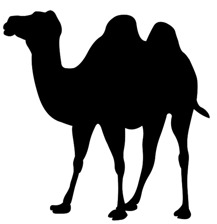 Clip art of wall. Camel clipart silhouette