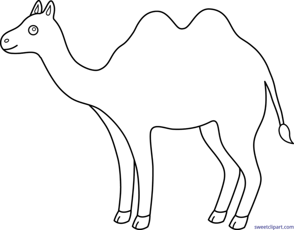 Camel clipart simple. All clip art archives