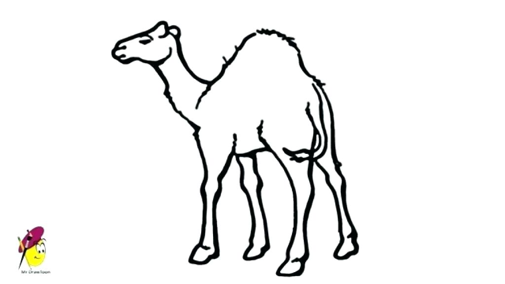 Camel clipart simple. Collection of free download