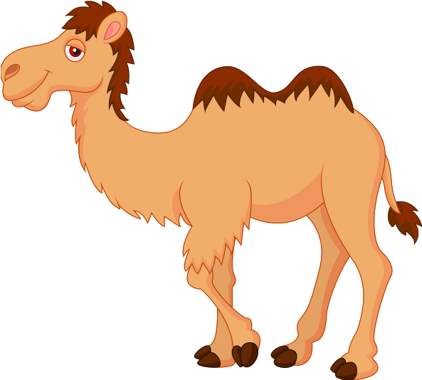 Camel clipart transparent background. Hd free unlimited download