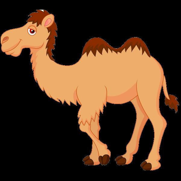 Camel png free icons. Desert clipart hot desert
