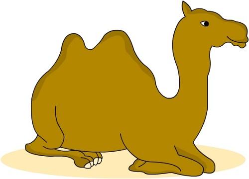 Camel clipart transparent background. Animal classroom