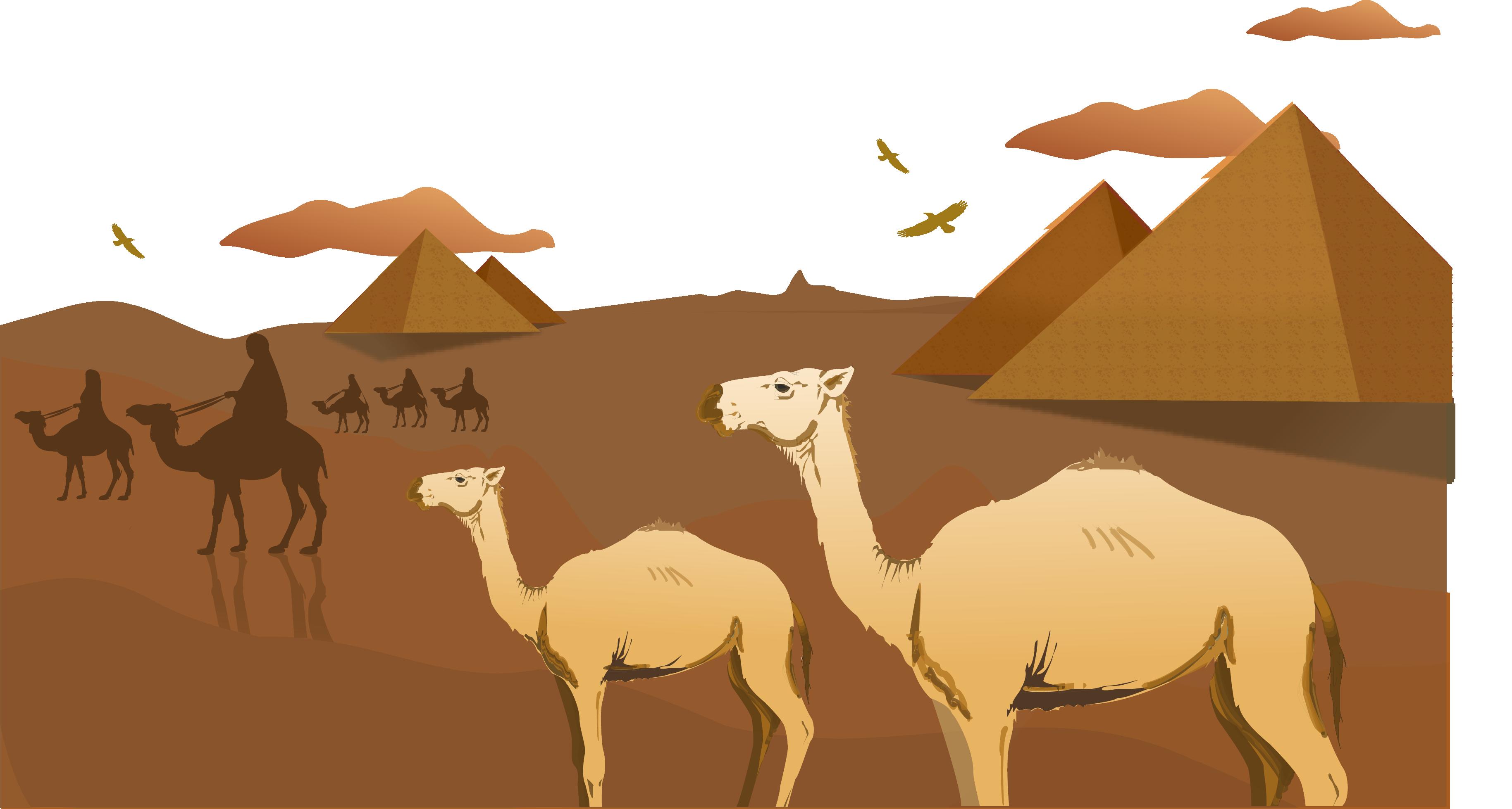 Egyptian clipart pyramid. Sahara camel arabian desert