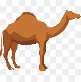 Png vectors psd and. Camel clipart vector