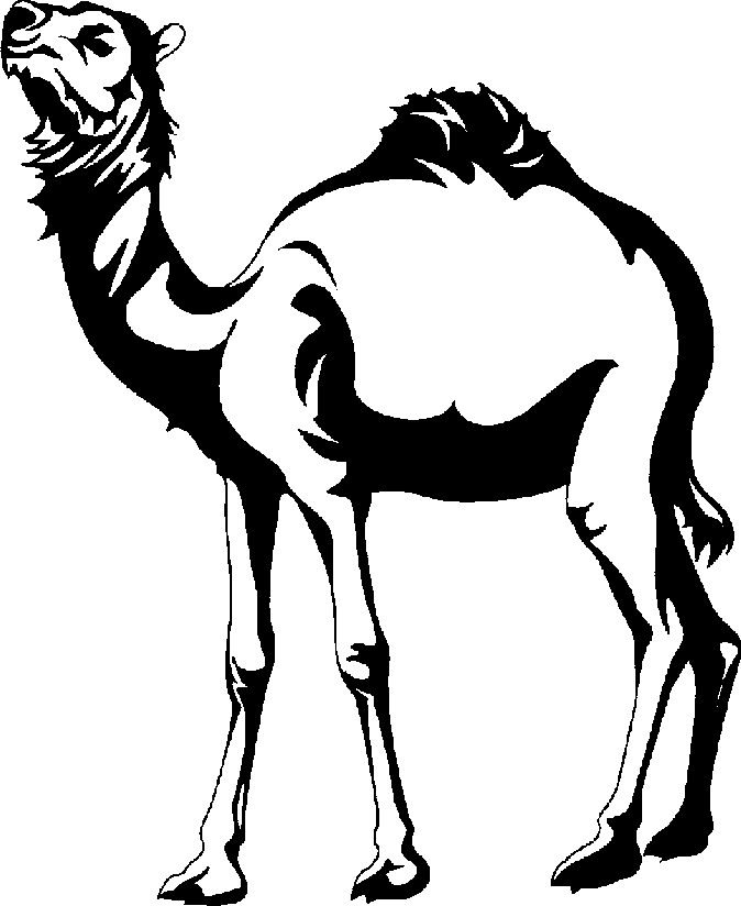 Black and white clip. Camel clipart vector