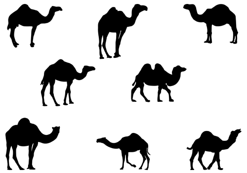 Camel clipart vector. Black and white free