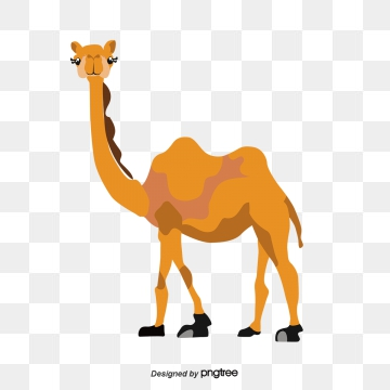 Camel clipart vector. Png psd and with