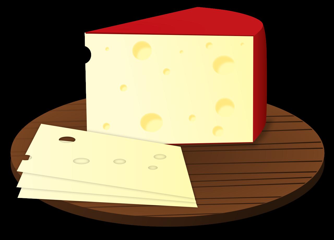 Camera clip art cheese. File openclipart svg wikimedia