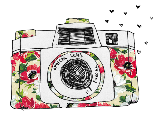 Pin by bibblelove on. Camera clip art flower