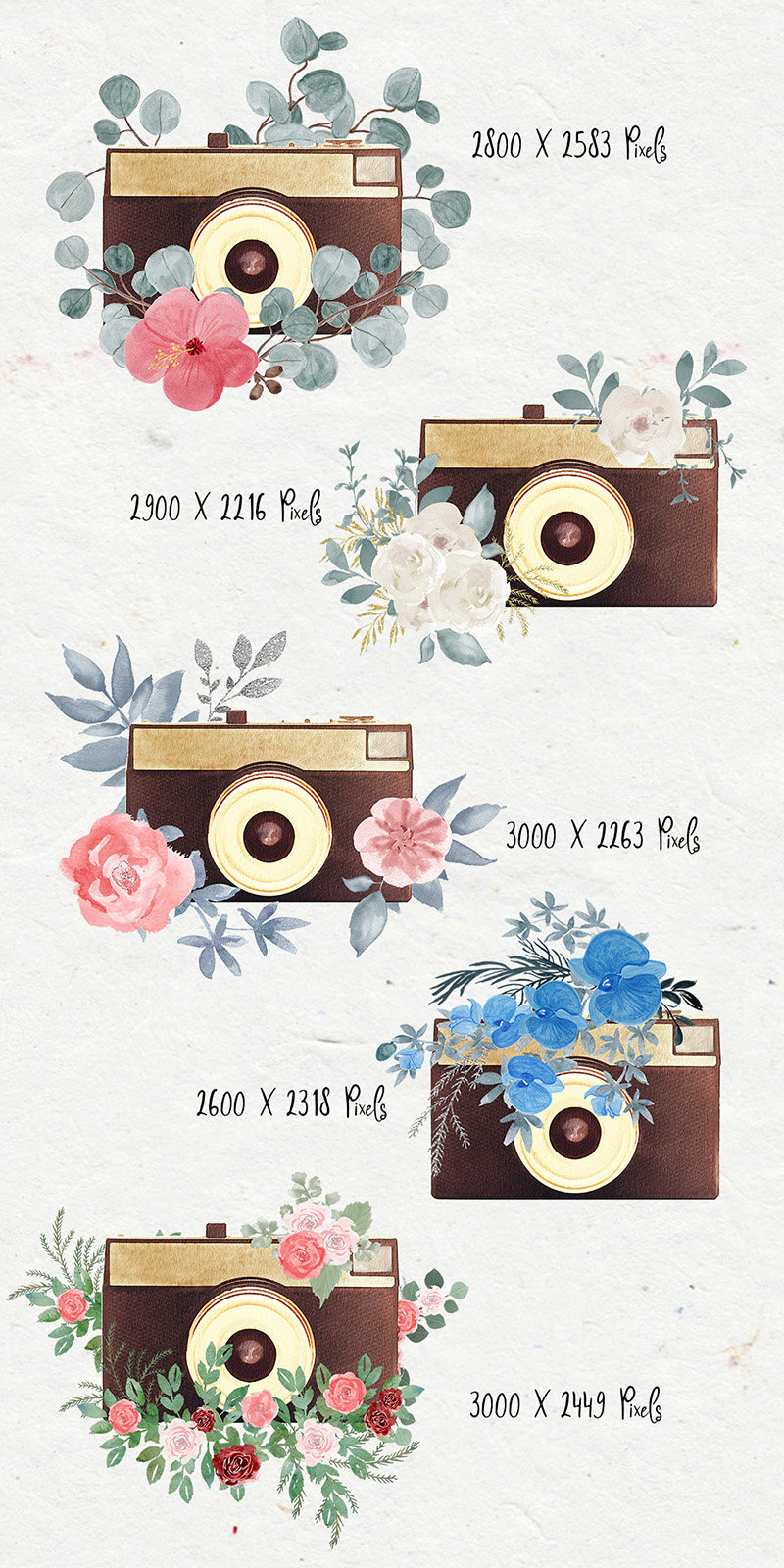 Camera clipart boho. Floral watercolor this is