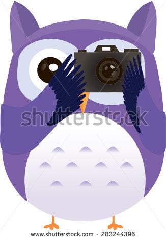 Owl pencil and in. Camera clipart cartoon