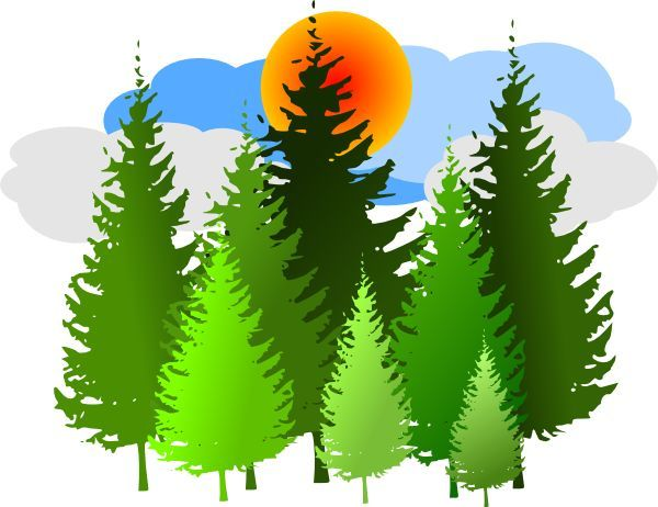 Image result for green. Clipart forest