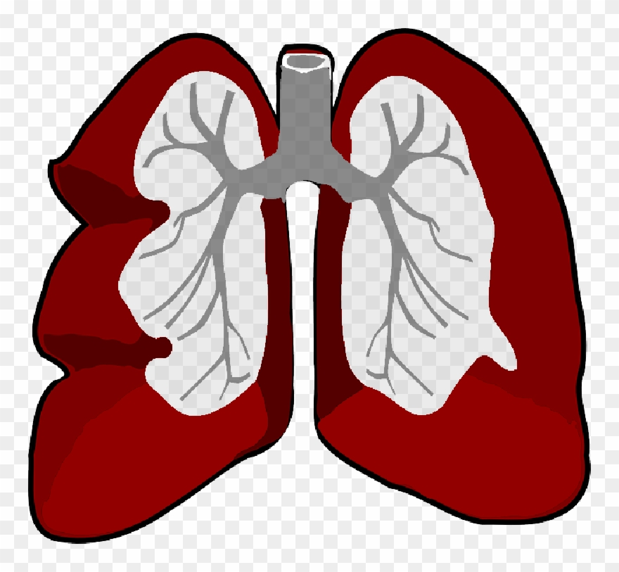 Free pictures outline png. Cancer clipart lung cancer